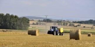 rolnik, rolnictwo, portal rolny, próchnica, gleba, resztki pożniwne
