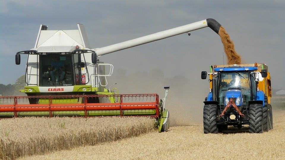 odbudowa światowych zapasów pszenicy, zbiory pszenicy, ceny pszenicy, zapasy pszenicy, Jakub Olipra, Credit Agricole,