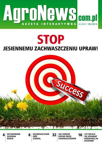 gazeta100