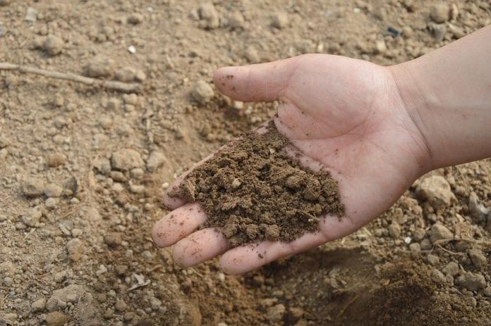 zdolność gleby do magazynowania wody, gleba, próchnica, rolnik, rolnictwo, portal rolny, zysk rolnika,