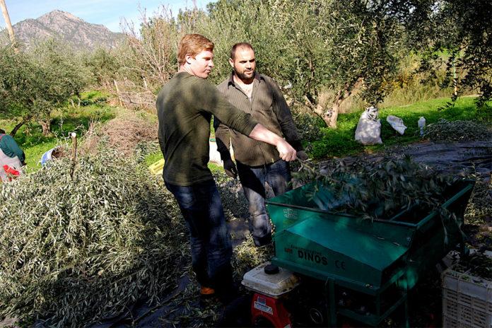 rolnik, rolnictwo, rolnictwo w Grecji, Euractiv.pl