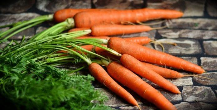 rolnik, rolnictwo, portal rolny, eko rolnictwo, rolnictwo ekologiczne,