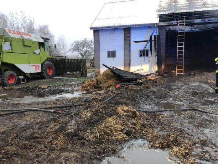 rolnik, rolnictwo, pożar, spłonęło tysiące kaczek, pożar pod Radomiem, KM PSP Radom, OSP Jedlińsk