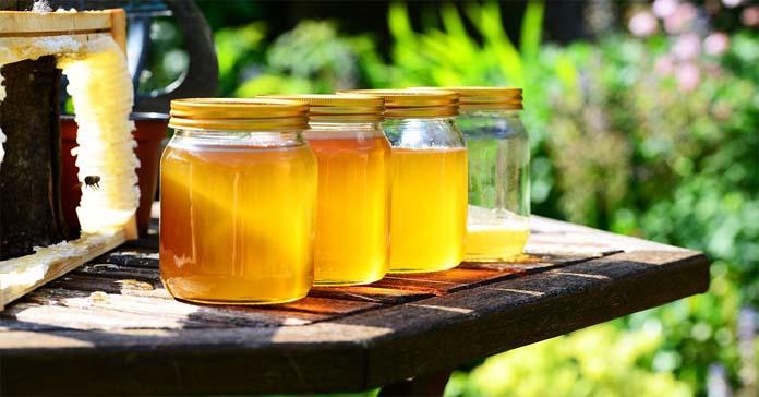 pszczoły, pszczelarze, spożycie miodu w Polsce, pszczoły w miastach, ochrona środowiska, DHL Polska