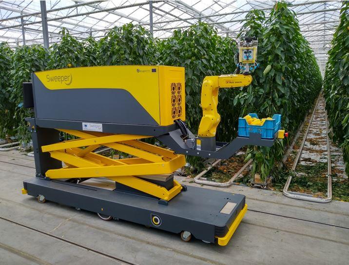 robot do zbierania papryki