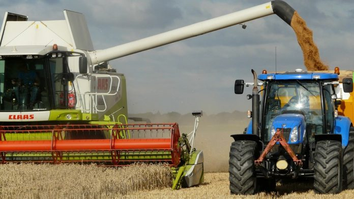 AgroNawigator PKO BP, PKO BP, zboże, ceny zbóż, pszenica, ceny pszenicy