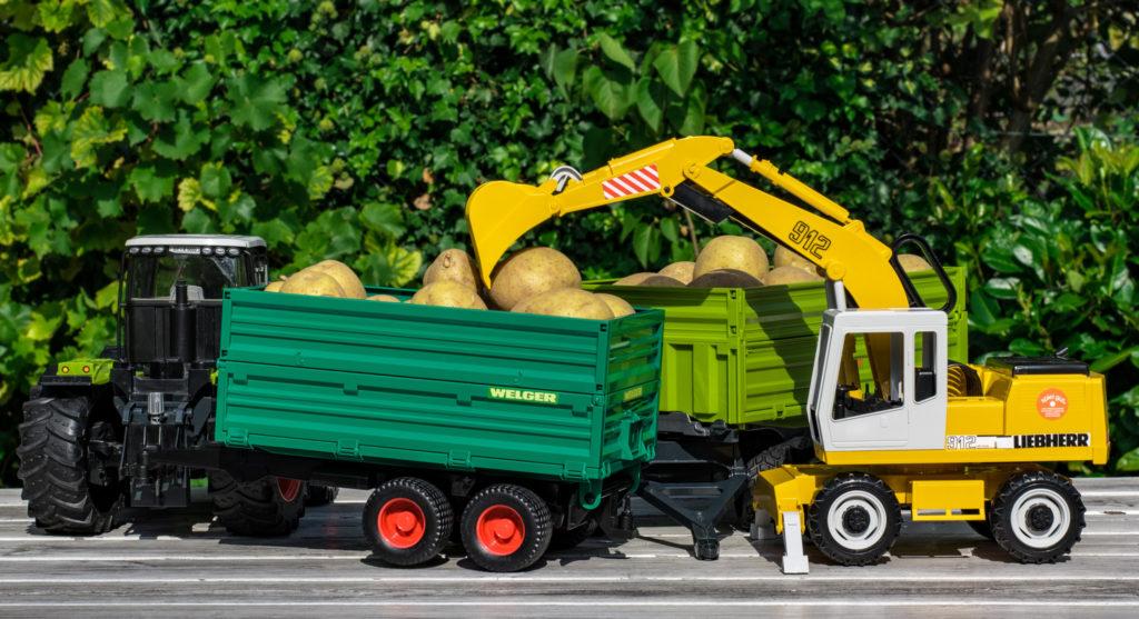 rolnik, ceny ziemnikaów, ziemniaki, Instytut Ekonomiki Rolnictwa i Gospodarki Żywnościowej,